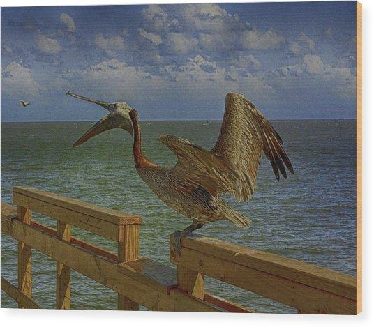 Pelican Eating Wood Print