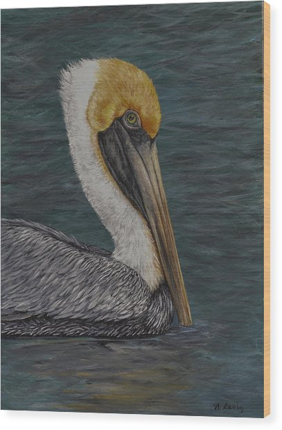 Pelican Floating In The Bay Wood Print