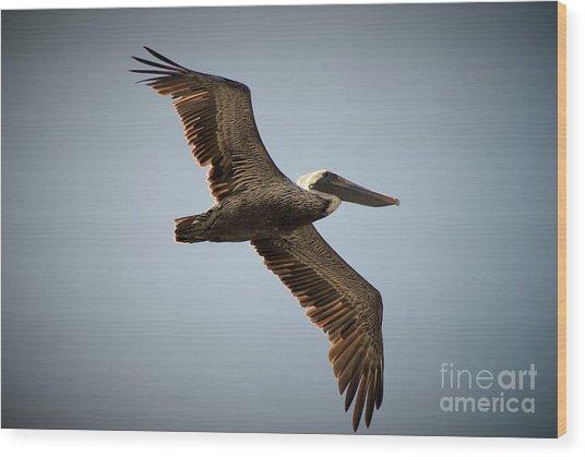 Pelican Pattern Wood Print