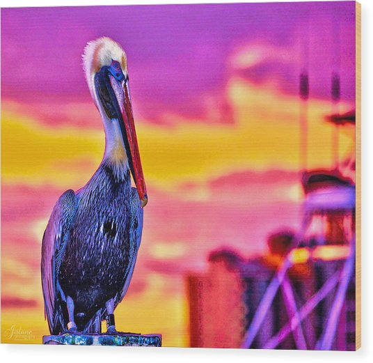 Pelican Pete Wood Print