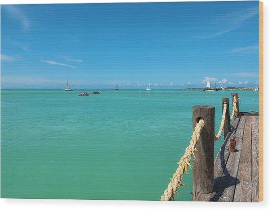 Pelican Pier And Ocean, Palm Beach Wood Print by Alberto Biscaro