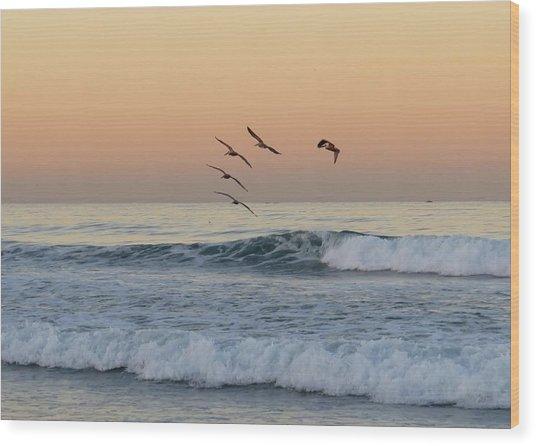 Pelican Series 2 Wood Print