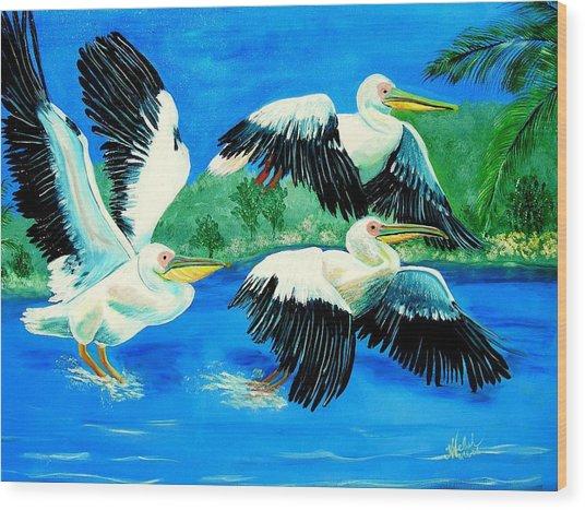 Pelican Trio Wood Print by Kathern Welsh
