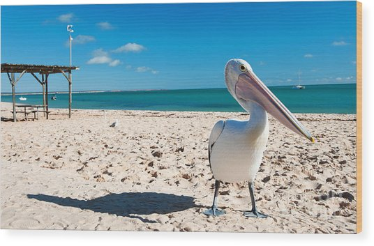 Pelican Under Blue Sky Wood Print