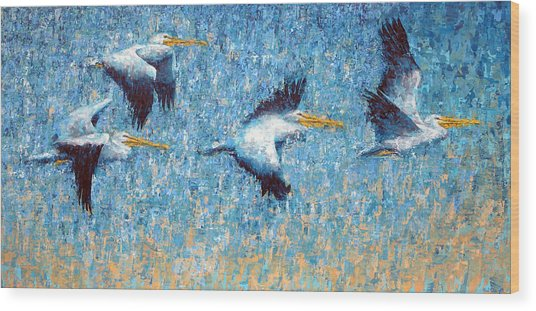 Pelicans 3 Wood Print by Ned Shuchter