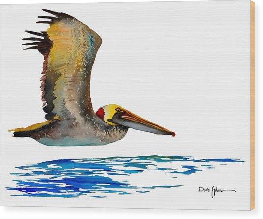Da137 Pelican Over Water By Daniel Adams Wood Print