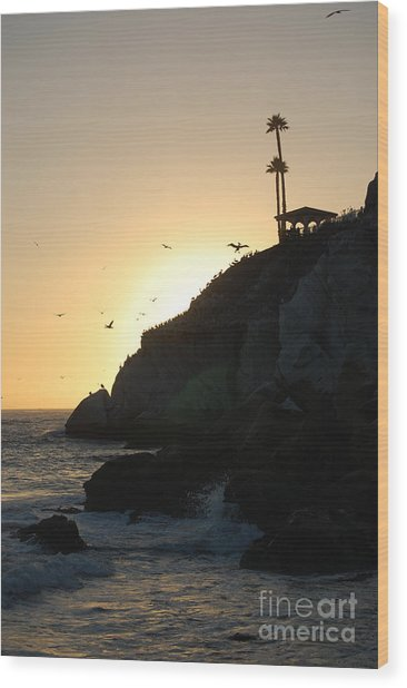 Pelicans Gliding At Sunset Wood Print