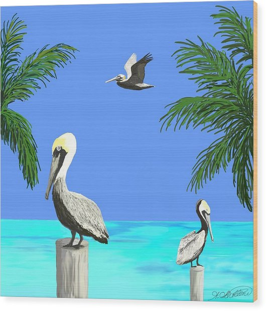 Pelicans In Meditation Wood Print by Amy Scholten