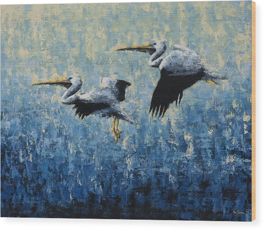 Pelicans Wood Print by Ned Shuchter