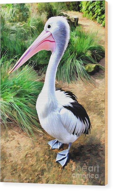 Pelicans Pride Wood Print by Shannon Rogers