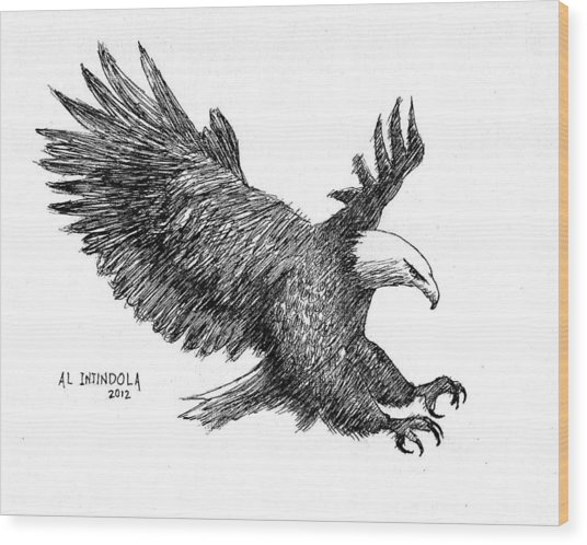 Pen And Ink Bald Eagle Wood Print