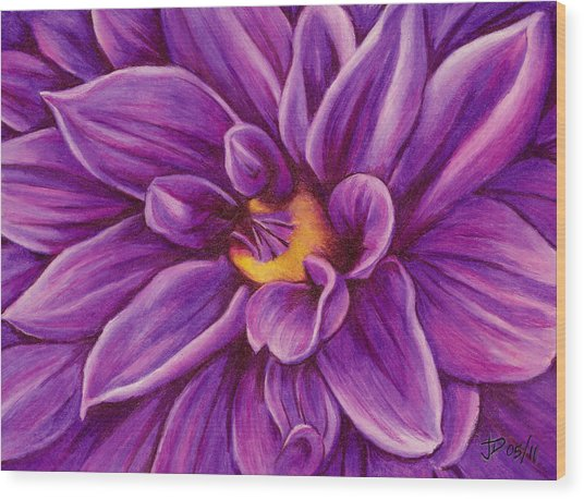 Pencil Dahlia Wood Print