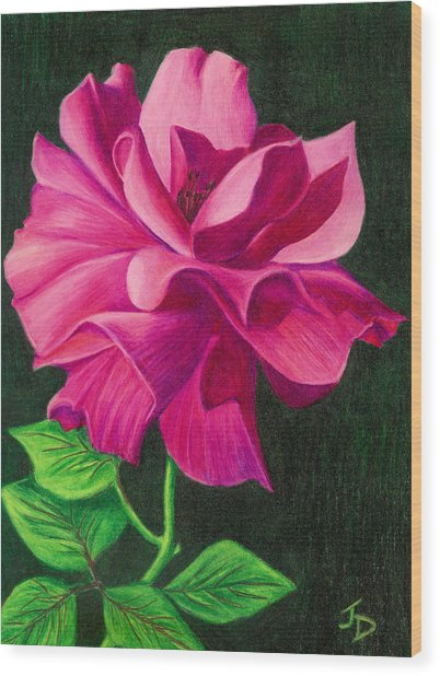 Pencil Rose Wood Print