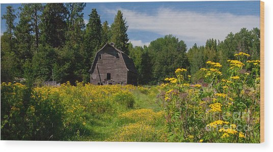 Pend Oreille Barn Wood Print