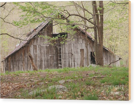 Pendleton County Barn Wood Print
