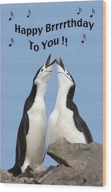 Penguin Birthday Card Wood Print