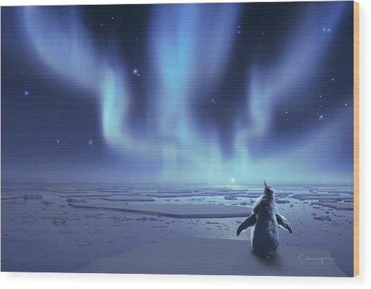 Penguin Dreams Wood Print