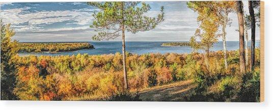 Peninsula State Park Scenic Overlook Panorama Wood Print