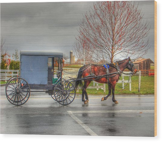 Pennsylvania Amish Wood Print