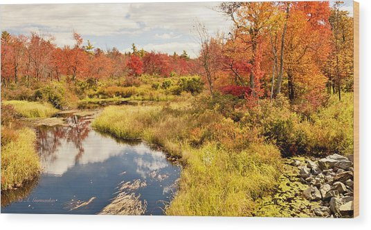 Pennsylvania Autumn Pocono Mountain Stream Wood Print