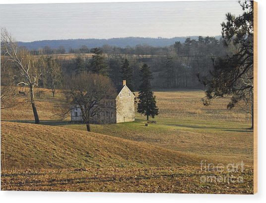 Pennsylvania Wood Print
