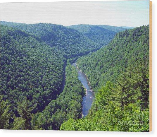 Pennsylvania Grand Canyon 2 Wood Print