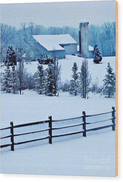 Pennsylvania Winter Wood Print