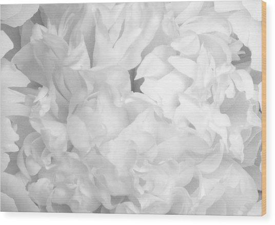Peony Petals Wood Print