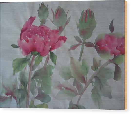 Peony010 Wood Print