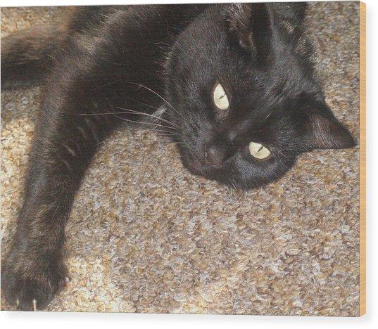 Pepsi Black Cat Found The Hot Spot Wood Print