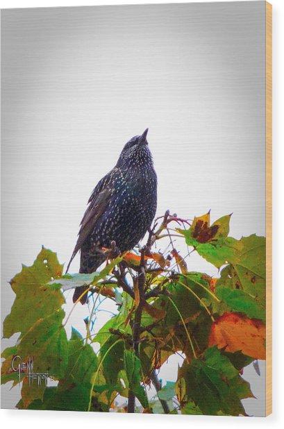 Perched Aloft Wood Print