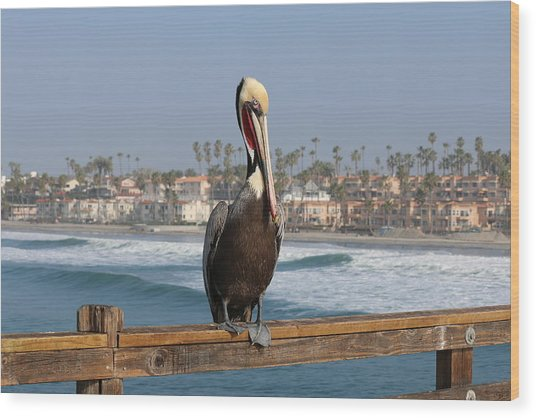 Perched On The Pier Wood Print