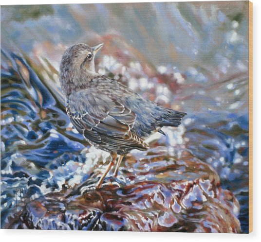 Perfect Camouflage  Wood Print by Dianna Ponting
