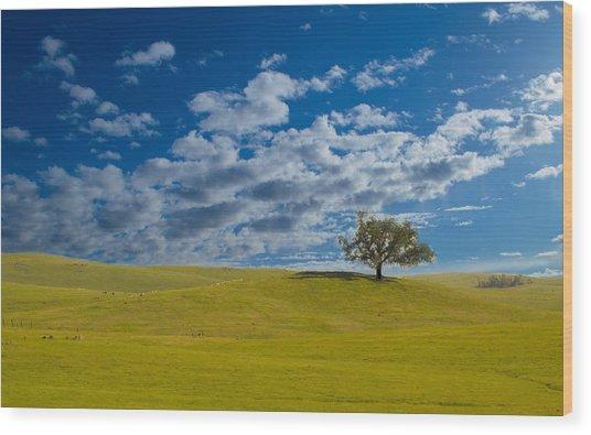 Perfect Landscape Wood Print