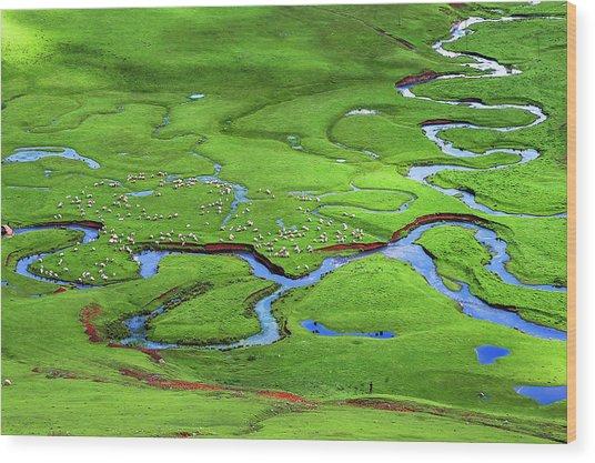 Persembe Yaylasi Wood Print