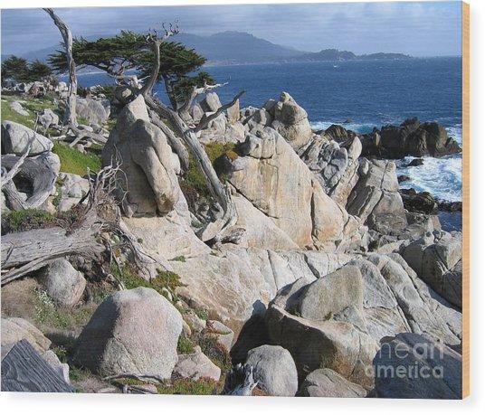 Pescadero Point Wood Print