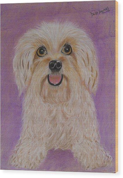 Pet Dog Wood Print by David Hawkes
