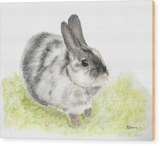 Pet Rabbit Gray Pastel Wood Print