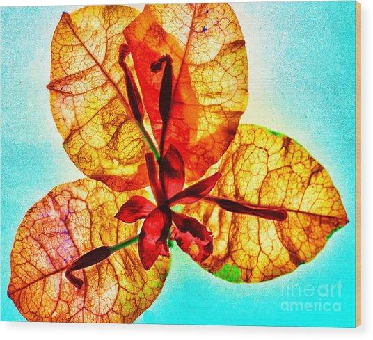 Petals On Blue Wood Print