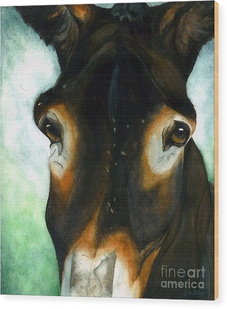Pete The Mule Wood Print