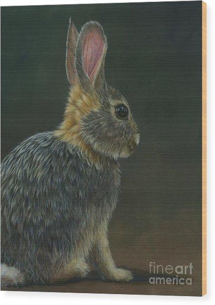 Peter Paul Or Mary Wood Print