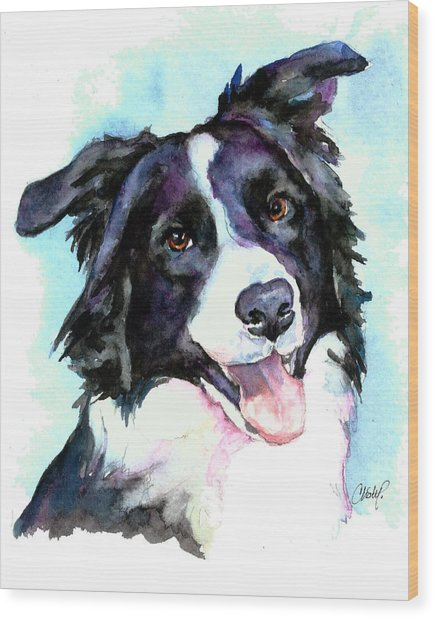 Petey Border Collie Wood Print