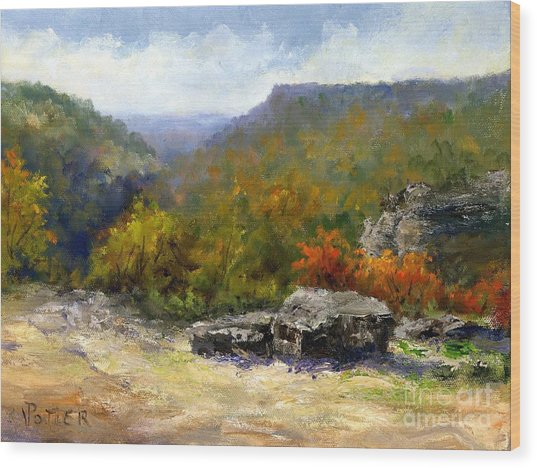 Petit Jean View From Mather Lodge Wood Print