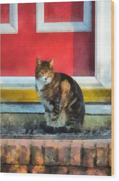 Pets - Tabby Cat By Red Door Wood Print by Susan Savad