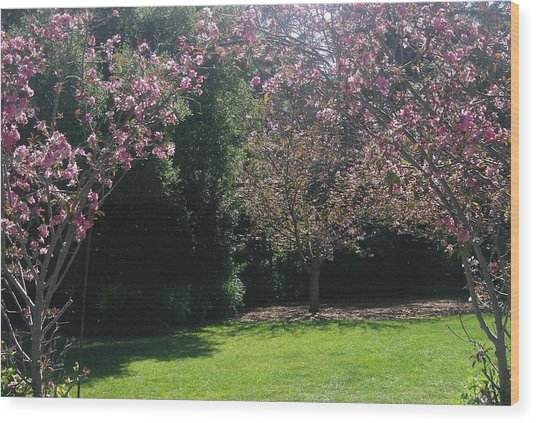 Petty In Pink Wood Print by Marian Jenkins