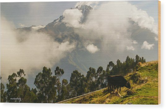 Peru Mountains With Cow Wood Print