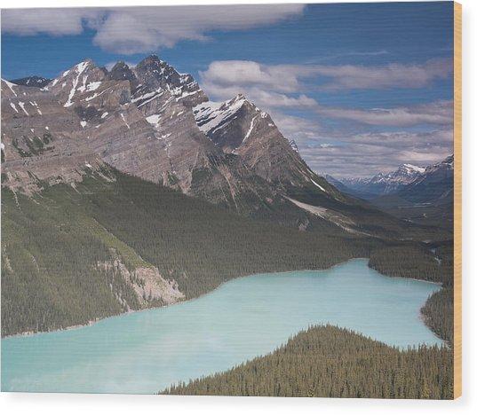 Peyto Lake And Caldron Peak Wood Print by Richard Berry