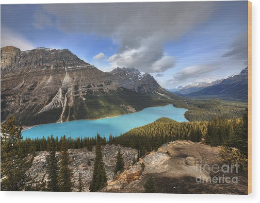 Peyto Lake Banff Wood Print