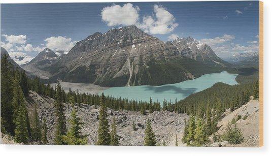 Peyto Panorama Wood Print