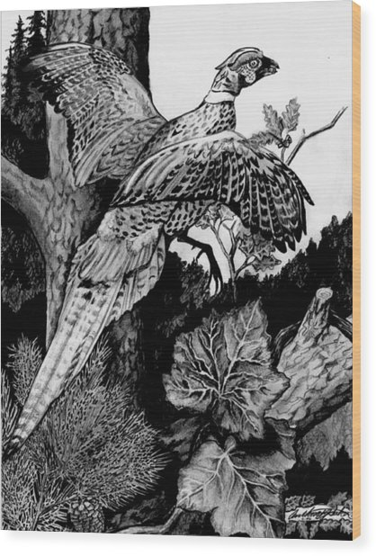 Pheasant In Flight Wood Print
